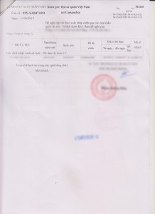 Visa Application Code sample 2