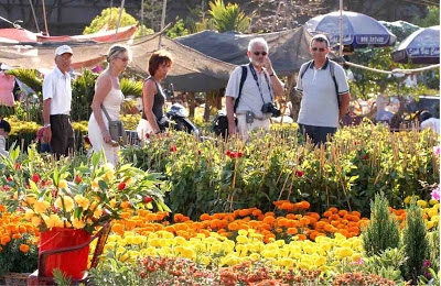 Hanoi to host 65 spring flower markets on tet holiday 2013 mightylinksfo