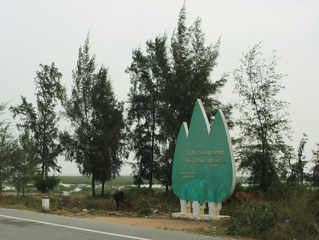 Tra Co Peninsula in Quang Ninh Province