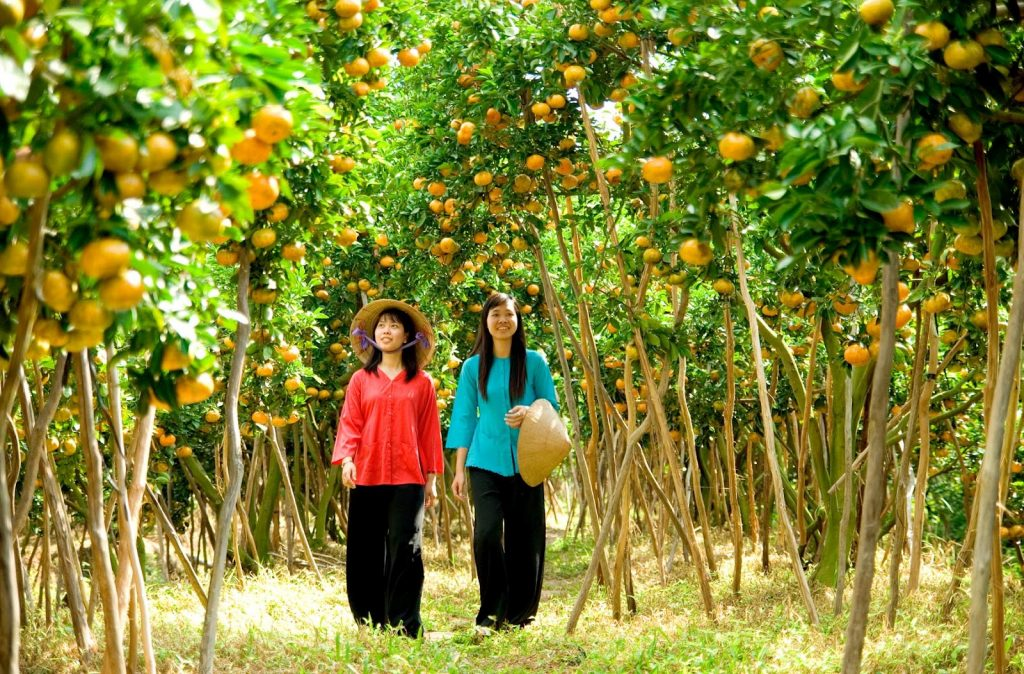 Cho Lach Orchard – the kingdom of fruits in Ben Tre